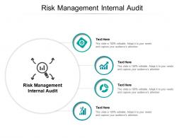 Risk Management Internal Audit Ppt Powerpoint Presentation Inspiration Maker Cpb