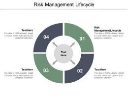 Risk Management Lifecycle Ppt Powerpoint Presentation Inspiration Example File Cpb
