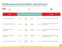 Risk Management Maturity Model Role And Process Status Ppt Powerpoint Presentation Styles Format