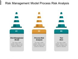 Risk Management Model Process Risk Analysis Opinion Counts Cpb