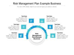 Risk Management Plan Example Business Ppt Powerpoint Presentation Inspiration Designs Download Cpb
