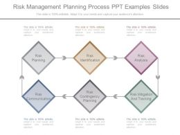 Risk Management Planning Process Ppt Examples Slides