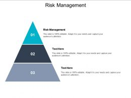 Risk Management Ppt Powerpoint Presentation Professional Smartart Cpb