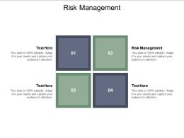 Risk Management Ppt Powerpoint Presentation Styles Styles Cpb