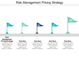 Risk Management Pricing Strategy Ppt Powerpoint Presentation Portfolio Maker Cpb