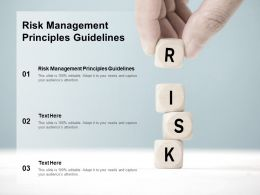 Risk Management Principles Guidelines Ppt Powerpoint Presentation Model Designs Cpb