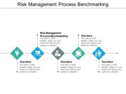 Risk Management Process Benchmarking Ppt Powerpoint Presentation Styles Designs Cpb
