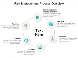 Risk Management Process Overview Ppt Powerpoint Presentation File Design Templates Cpb
