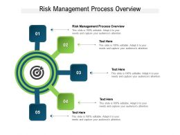 Risk Management Process Overview Ppt Powerpoint Presentation Graphics Download Cpb