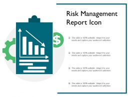 Risk Management Report Icon