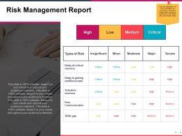 Risk Management Report Presentation Visuals