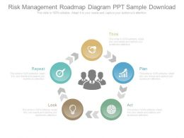 Risk Management Roadmap Diagram Ppt Sample Download