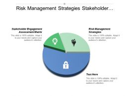Risk Management Strategies Stakeholder Engagement Assessment Matrix Stakeholder Theory Cpb
