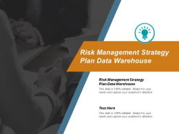 Risk Management Strategy Plan Data Warehouse Ppt Powerpoint Presentation Summary Example Cpb