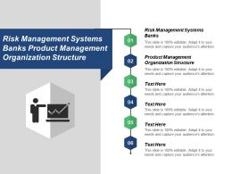 Risk Management Systems Banks Product Management Organization Structure Cpb