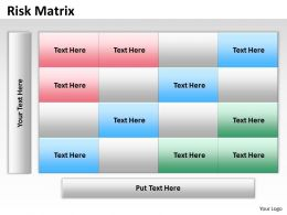 Risk Matrix dummy
