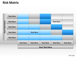 Risk Matrix flow diagram
