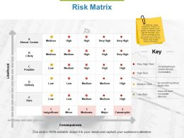 Risk Matrix Ppt Powerpoint Presentation File Designs