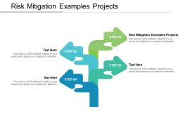 Risk Mitigation Examples Projects Ppt Powerpoint Presentation Template Cpb