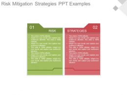 Risk Mitigation Strategies Ppt Examples