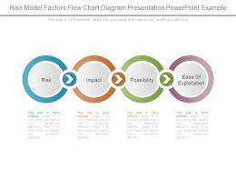 Risk Model Factors Flow Chart Diagram Presentation Powerpoint Example