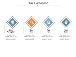 Risk Perception Ppt Powerpoint Presentation Styles Picture Cpb