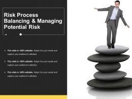 Risk Process Balancing And Managing Potential Risk
