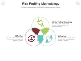 Risk Profiling Methodology Ppt Powerpoint Presentation Show Format Ideas Cpb