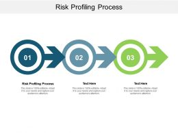 Risk Profiling Process Ppt Powerpoint Presentation File Outline Cpb