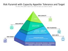 Risk Pyramid With Capacity Appetite Tolerance And Target