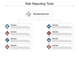Risk Reporting Tools Ppt Powerpoint Presentation Layouts Professional Cpb