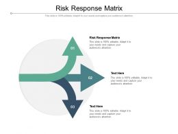 Risk Response Matrix Ppt Powerpoint Presentation Infographic Template Layouts Cpb