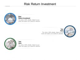 Risk Return Investment Ppt Powerpoint Presentation Icon Guidelines Cpb