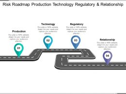 Risk Roadmap Production Technology Regulatory And Relationship