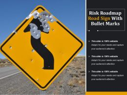 Risk Roadmap Road Sign With Bullet Marks