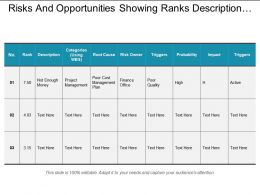 Risks And Opportunities Showing Ranks Description Categories And Probability