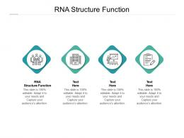RNA Structure Function Ppt Powerpoint Presentation Portfolio Rules Cpb