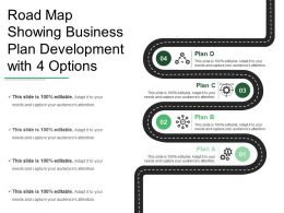 Road Map Showing Business Plan Development With 4 Options