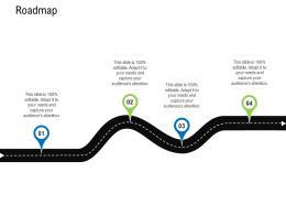 Roadmap Business Data Analytics Ppt Powerpoint Presentation Portfolio Visual Aids