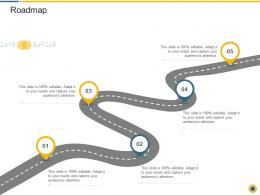 Roadmap Downturn In An Automobile Company Ppt Professional Pictures