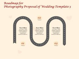 Roadmap For Photography Proposal Of Wedding C1415 Ppt Powerpoint Presentation Infographics