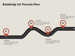Roadmap For Process Flow A786 Ppt Powerpoint Presentation Icon Example