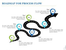 Roadmap For Process Flow C1006 Ppt Powerpoint Presentation Ideas Examples