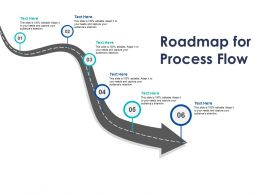 Roadmap For Process Flow C1136 Ppt Powerpoint Presentation Ideas