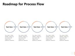 Roadmap For Process Flow Circular Ppt Powerpoint Presentation Pictures