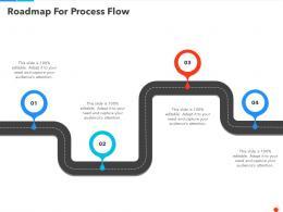 Roadmap For Process Flow Ppt Demonstration