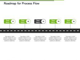 Roadmap For Process Flow Ppt Powerpoint Presentation File Slide