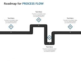 Roadmap For Process Flow Ppt Powerpoint Presentation Icon Design