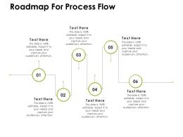 Roadmap For Process Flow Ppt Powerpoint Presentation Icon Mockup