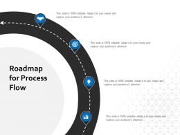 Roadmap For Process Flow Ppt Powerpoint Presentation Inspiration Design Ideas